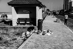 Monday Morning Trash (Steve Crane) Tags: beach strand trash southafrica garbage litter westerncape beachroad helderberg