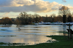 Flooded Meads at Chertsey (coolboxuk1) Tags: sunset thames floods chertsey thamesflood2014