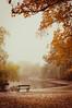 Silence (MMortAH) Tags: park york autumn trees lake fall bench 50mm nikon yorkshire 14 north nikkor afs rowntreepark d90