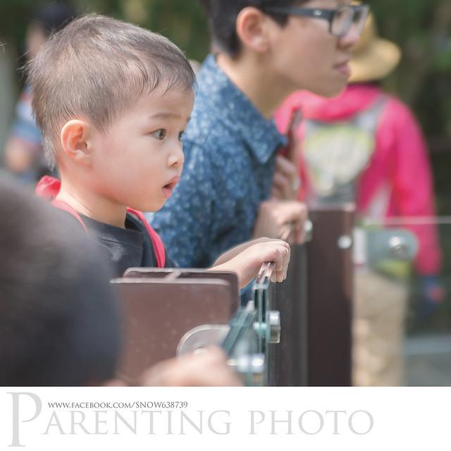 小赫第一次到木柵動物園..... 看得很認真