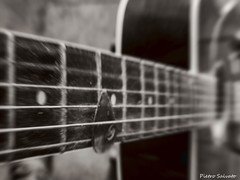 String 'n' dust with zoom (PietroEsse) Tags: blackandwhite stilllife biancoenero canonpowershots3is