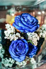 El mismo color que el cielo (Edwin.1997) Tags: blue roses de y para negro una alemania todo tu rosas ramo fondo regalo castillo carta edwin nada malo amazonas azules amada salazar verdecora mesnada acompaalo