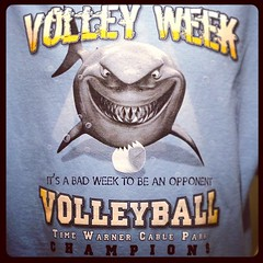 It's shark week on someone's volleyball court...