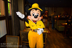 Breakfast at the Golden Forest Lounge (Disney Dan) Tags: travel summer vacation france june europe character disney mickey mickeymouse characters hotels fr sequoia disneylandparis dlp 2014 disneylandresortparis disneycharacters disneycharacter dlrp sequoialodge marnelavallée mickeyfriends disneypictures disneyparks disneypics disneyssequoialodge goldenforestclub goldenforestlounge dlpjune2014