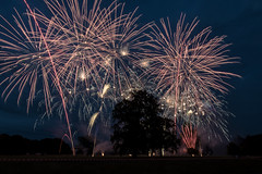Newly Hall, Ripon (johnhjic) Tags: johnhjic nikon d800e northyorkshire fireworks tree colours red white black ripon newlyhall firework smoke fire