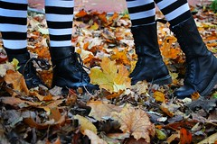 IMG_2652 (anthrax013) Tags: shoes stockings stripy drmartens autumn yellow leaves