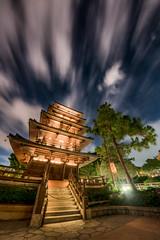 Epcot - Fast Forward (Jeff Krause Photography) Tags: architecture coudy disney epcot japan night pagoda park pavilion pine temple tree wdw walt world staircase theme baylake florida unitedstates us fisheye