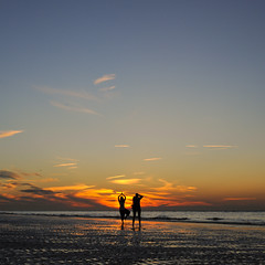 an eveneing at the beach (Werner Schnell Images (2.stream)) Tags: ws beach evening sunset sonnenuntergang strand meer sea nordsee zeeland niederlande holland yoga