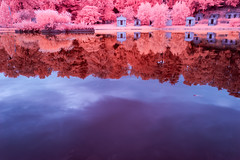 More than a Mirror (jrseikaly) Tags: infrared ir multicolor red pink reflection lake cemetery tomb grave water canon jack seikaly jrseikaly photography trees nature nyc new york city green wood greenwood brooklyn