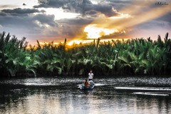 (Manlio'77) Tags: vietnam nature waterscape landscape people boat fishing palms green sunset golden sky dramaticsky clouds cloudscape hoian asia southasia beauty beautiful relaxing calm peaceful nikon fotocult colors tramonto impressive