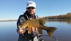 Smallmouht Bass (jpellgen) Tags: fishing bass smallmouth river mississippi 2016 fall autumn october fish mn minnesota midwest usa america
