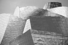 Guggenheim, Bilbao (Mattia Camellini) Tags: guggenheim bilbao museo incoloro biancoenero blackandwithe mattiacamellini canoneos7d canonefs18135mmf3556is spagna