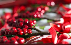 Festive December 2016 No.1 (Deborah S-C - in The Fairy Garden) Tags: red scarlet christmas december2016 christmasmonth christmascrackers redribbonandredberries festiveseason