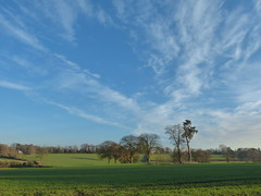 P1450779 (Joy Shakespeare) Tags: coundonwedge brownshillgreen coventry uk landscapes