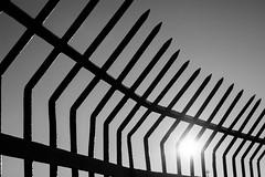 IMG_0508 (sebastianottowitz) Tags: rot copenhagen kopenhagen kbenhavn autumn herbst sun sonne harbour hafen sky art canon gold shadow sightseeing sights besichtigung turm denmark skandinavien scandinavia norden north cold beauty bw black white