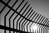 IMG_0508 (sebastianottowitz) Tags: rot copenhagen kopenhagen københavn autumn herbst sun sonne harbour hafen sky art canon gold shadow sightseeing sights besichtigung turm denmark skandinavien scandinavia norden north cold beauty bw black white