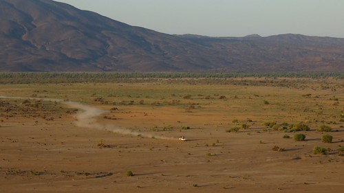Djibouti_2015 - Plaine et forêt d'Andaba