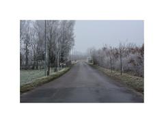 Silent road IV. Hornum (North Jutland), Denmark (2008) (csinnbeck) Tags: denmark hornum 2008 canon eos 40d 50mm 18 winter jutland dk 9600 december street road rural landscape bland cold gray grey boring frost frosty
