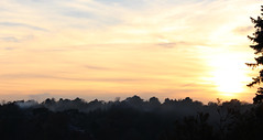 Riddlesdown Sunset 2 (Chris Sinfield) Tags: colours skies sun sunset riddlesdown uk visituk visitsurrey surrey hills trees downs england countryside travel sky clouds tree plant plants landscape glowing inspiration beauty natural foliage flickr photography canon canon700d europe smoke