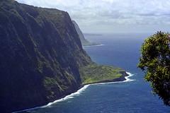 Sea Cliffs (AntyDiluvian) Tags: hawaii 2001 30thanniversary bigisland waipio valley waipiovalleylookout lookout cliffs seacliffs