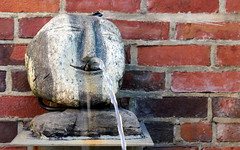 Visage. (Joseph Skompski) Tags: baltimoremd baltimore visionaryartmuseum visionaryart artmuseum museum fountain