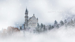 fairytale Castle (FredConcha) Tags: fairytalecastle castele germany neuschwanstein fog snow snowing landscape cold white fredconcha canon 169 nature castelo alemanha nevoeiro contodefadas