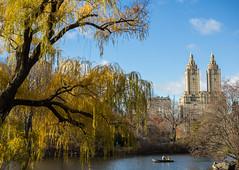 A Perfect Day (Tim Gupta) Tags: nyc newyorkcity newyork centralpark fall fallfoliage fallcolors rowboat