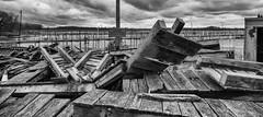 Human...Nature (AAW) (hmthelords) Tags: upstateny braddocksbay ecologicalrestoration nature marina outdoor docks activeassignmentweekly bw bestofweek1 bestofweek2