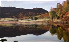 first frost (steve-jack) Tags: hasselblad 501cm 150mm fuiji velvia 100f film 120 medium format cumbria lake district autumn tarn