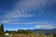 DSC_2493 (cloudrick) Tags: 福壽山農場 梨山 楓葉