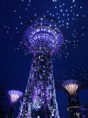 193055 (kawaiileather) Tags: trees colors lights singapore nightscene supertrees gardenbythebay