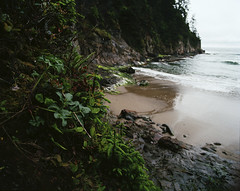 (David J. Paulin) Tags: 120 oregon coast pentax kodak medium format 6x7 ektar