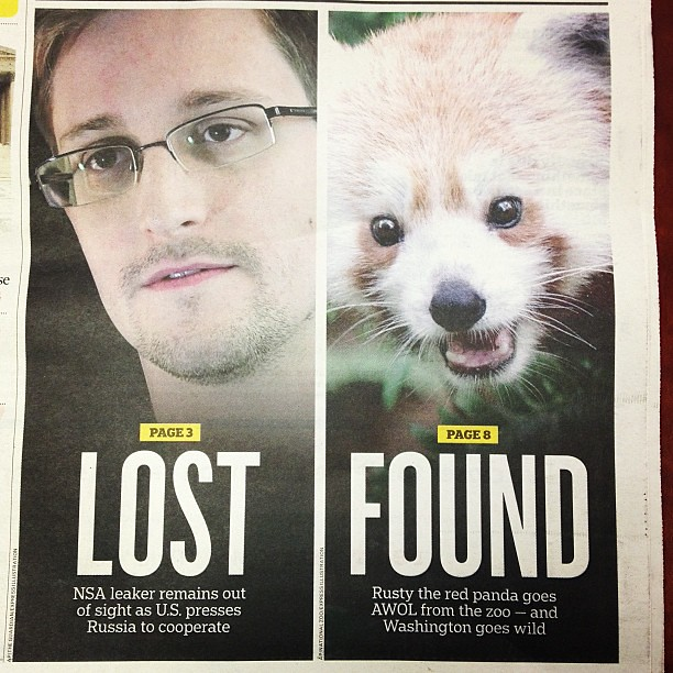Pretty much the best Express cover ever. (And am happy Rusty the red panda was found!)