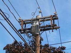 Old Pole, New Insulators (en tee gee) Tags: old transformer massachusetts pole insulators 4kv