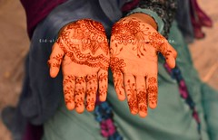 EID : Mehndi design (Ameer Hamza) Tags: new detail girl palms person design hands eid palm single latest pakistani inside henna frontal mehndi islamic eidulfitr 2013 eidinpakistan gettyimagesmiddleeast eidinkarachi