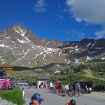 Cyclists on the Gavia thumbnail