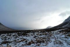 Raindeers (raoulteflouze) Tags: winter wild mountain animals montagne landscape scotland hiver deer animaux paysages mor buachaille sauvages raindeer etive ecosse reines raindeers