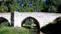le pont de St-Pons (Dominique Lenoir) Tags: bridge puente video paca ponte pont bro brug provence brcke stpons bouchesdurhne silta provencealpesctedazur saintpons lesmilles 13080 dominiquelenoir