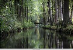 Spreewald (bernd obervossbeck) Tags: nature forest river natur biospherereserve flies fluss wald spreewald naturschutzgebiet naturalreserve lbbenau lehde biosprenreservat mygearandme mygearandmepremium