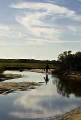 Herring cove wetlands 4 (Rosiecheeks) Tags: provincetown capecod herringcove