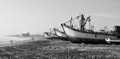 Santa Rosa (Leandro B.) Tags: blackandwhite blancoynegro peru puerto barcos playa santarosa pesca chiclayo lambayeque leandrobritto