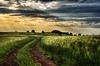 Road Of Footprints And Memories (Dimmilan) Tags: road sunset sky nature grass clouds landscape countryside twilight path serbia hills fields rajac slicesoftime galleryoffantasticshots