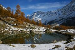 le lac de Fafleralp (luka116) Tags: nature berg montagne automne schweiz switzerland novembre suisse swiss lac svizzera paysage moutain wallis valais montagnes ltschental fafleralp