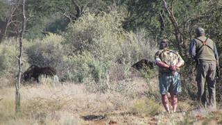 Namibia Safari - Lake Lodge 32