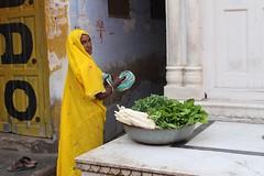 Mooli (Cathy Le Scolan-Qur Photographies) Tags: street india vegetables yellow jaune women femme pushkar rue lgumes rajasthan inde mooli canonfrance cathylescolanqur
