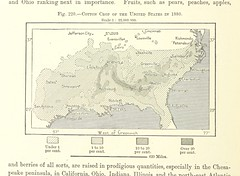 Image taken from page 566 of 'The Earth and its Inhabitants. The European section of the Universal Geography by E. Reclus. Edited by E. G. Ravenstein. Illustrated by ... engravings and maps' (The British Library) Tags: unitedstates map cotton medium 1880 publicdomain vol16 bldigital mechanicalcurator pubplacelondon date1878 page566 recluselisee sysnum003055004 imagesfrombook003055004 imagesfromvolume00305500416 togeoref wp:bookspage=geography georefphase2