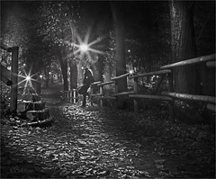 Night to fall (Soloross) Tags: park street wood city light portrait parco white man black fall love beauty look foglie night photoshop canon walking photography blackwhite leaf strada loneliness song silence cielo wait luci past bianco nero malinconia notte luce solitario feelings bellezza lampione città legno passato notturno silenzio storia pensiero fotografare cammino canzone