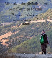 ≻ ≻ (gLySuNfLoWeR) Tags: para allah kalp amel hadis islamiyet