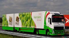NL - Heemskerk Volvo New FHGL (BonsaiTruck) Tags: new volvo camion trucks fh 2012 lorries lkw heemskerk gigaliner lzv eurocombi