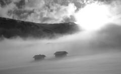 Rifugi (Gianluca Bragagna) Tags: panorama nikon foto neve alm pace sole nebbia alto alpi montagna vacanze susi spettacolo baita adige d600 sudtirol seiser